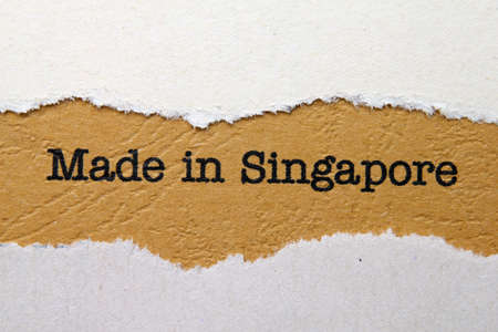 Made in Singapore photo