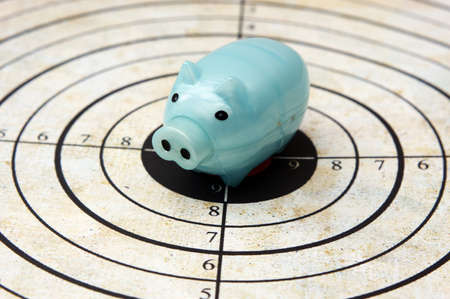 Piggy bank on target concept photo