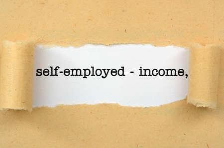 retour: Zelfstandigen - inkomen Stockfoto