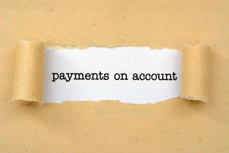 accounts payable: Payment on account