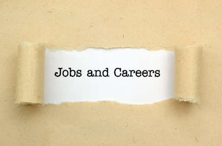 new job: Jobs and Careers
