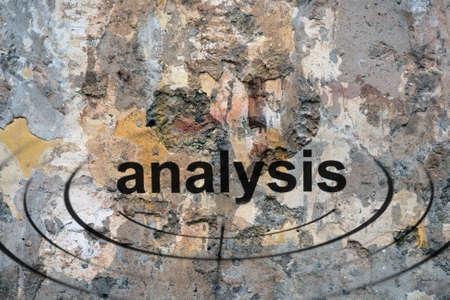 str: Analysis target