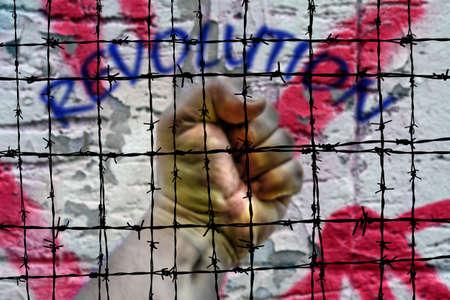 Revolution photo