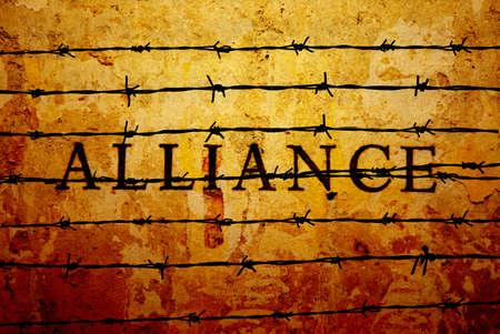 la union hace la fuerza: Alianza