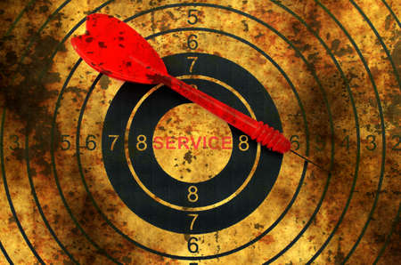 icons site search: Web service grunge  target concept Stock Photo