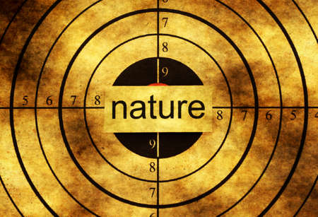 preservatives: Nature grunge target concept Stock Photo