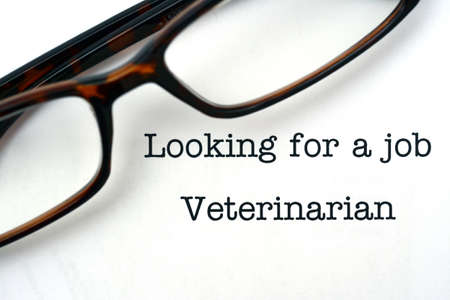 looking for a job: Looking for a job Veterinarian