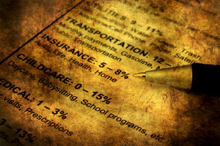budgetary: Savings plan grunge concept