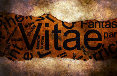 paper hole: Vitae text on paper hole concept Stock Photo