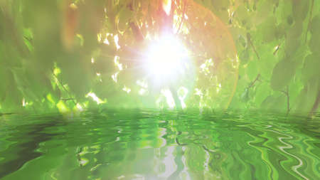 Surreal green leaves on tree reflecting in water Stock Photo