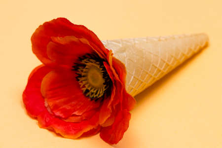 Ice cream cone with poppy flower . Minimal summer concept. Stock Photo
