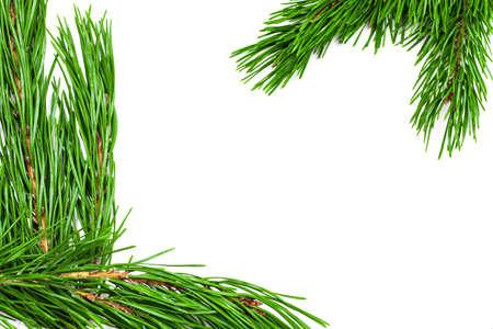 Christmas green framework isolated on white background.