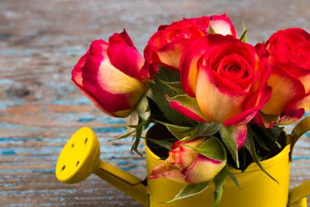 Belle fleur dans l'arrosoir sur la table en bois de grunge. Avec l'espace de copie.