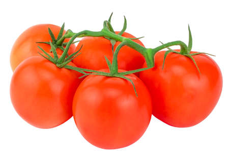 Tomato. Tomato branch. Tomatoes isolated on white. With clipping path.