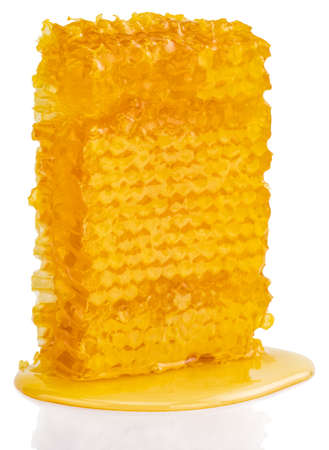 Honeycomb piece. Honey slice isolated on white