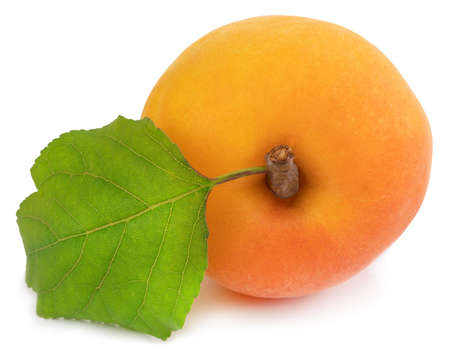 Apricot isolated on white Stock Photo