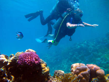 Woman scuba diver and beautiful colorful coral reef underwater. Standard-Bild