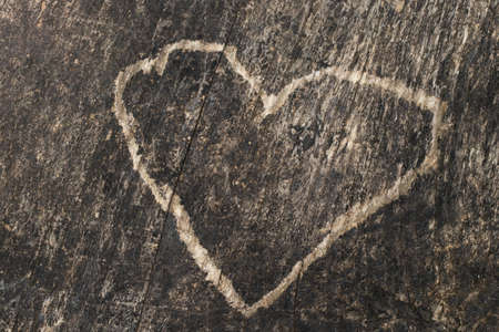 Heart carved in the bark of a tree, love concept.