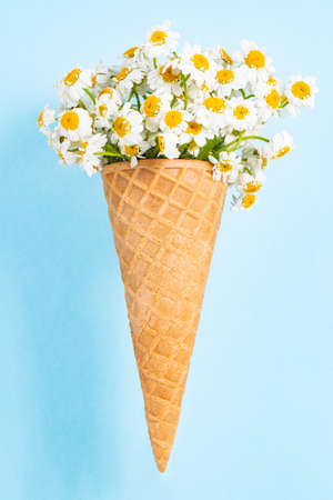 Flowers in a waffle cone on a blue background. Flat lay, top view floral background. Ð¡hamomile in a waffle cone.