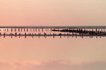 Beautiful salty pink lake. Travel in summer. Genichesk, Ukraine.