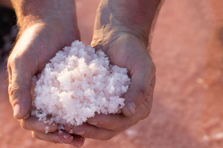 Pink sea salt in the palms. Salt mining. Beautiful salty pink lake.