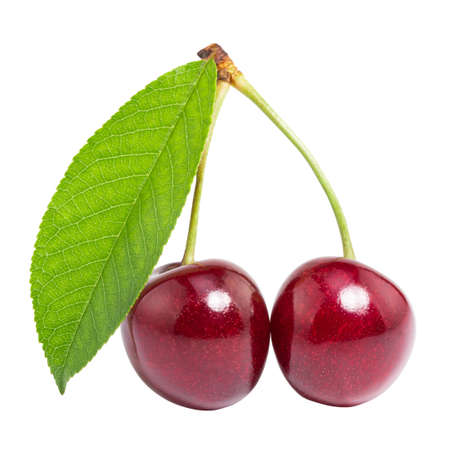 Cherry with leaf isolated on  white
