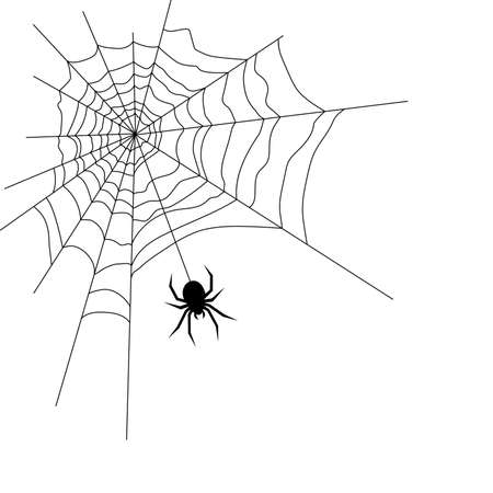 Vector Illustration of a Spider and a Web Illustration