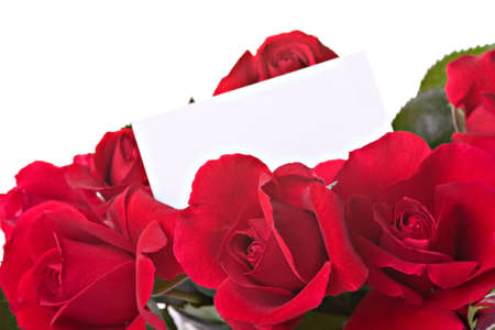 Beautiful roses with a white card isolated over white photo