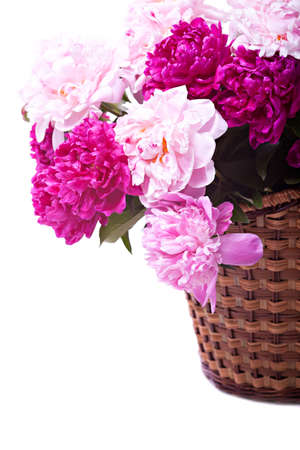 Bouquet of peonies blooms in basket isolated on white background