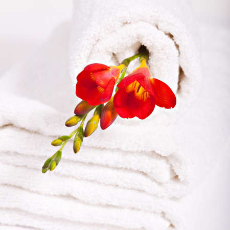 terry: resources for spa, white towel and red fresia flowers Stock Photo