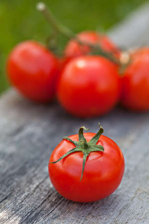 cherry varieties: Fresh sweet tomato on the wooden table Stock Photo