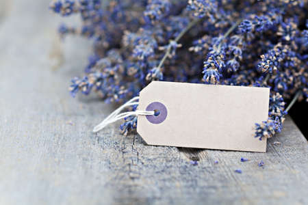 Dried lavender flowers with blank paper tag on wooden background photo