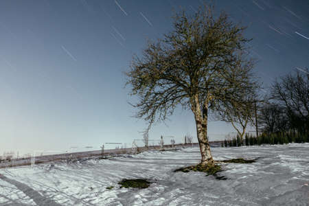 Long exposure star trails. Night winter landscape with tree on foreground.