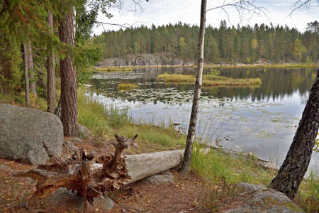 Lake Mustalampi with peat islands in the Nuuksio National Park in Finland.