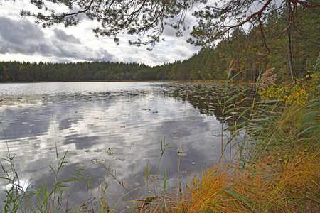 Lake Kolmikulmalampi in Nuuksio National Park in Finland.