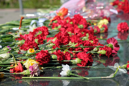 carnations near the monument to the unknown soldier Stock fotó