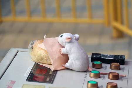 thieving: The toy rat tries to pull down the sandwich left on the control panel by the operator