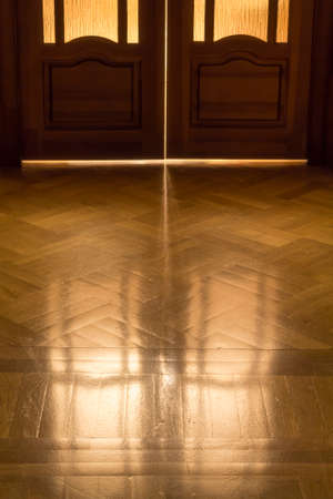 elapsed: The door of childhood memories  Reflection on the parquet floor closed door in retro style  The concept of elapsed time, background