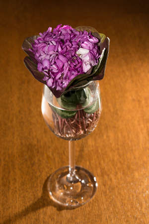 goblet: Miniature bouquet of purple flowers in a goblet of water
