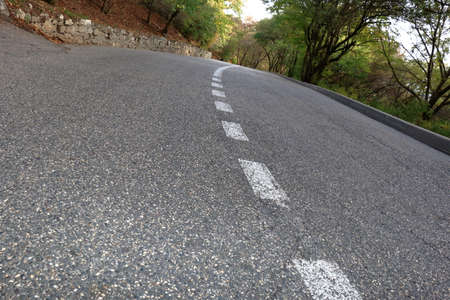 focus on the foreground: Paved road with dividing line in the forest in evening. Focus on foreground