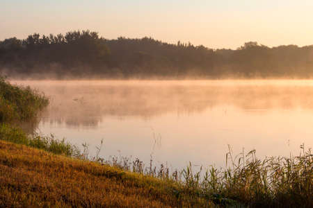 early fog: Morning fog on a lake in light of golden sun. Early morning Stock Photo