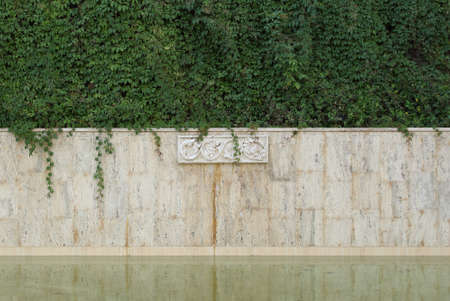 Water surface and an old stone wall with bas-relief and ivy. Background