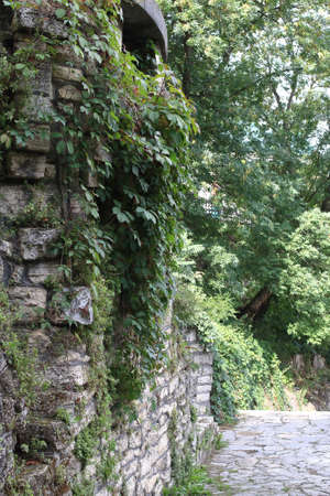 Old stone wall with rounded corner and ivy branches in Public Park