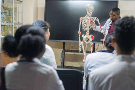 doctors of mixed race, of different sexes, in the study room, study human anatomy, on the skeleton. Young medical students at medical university