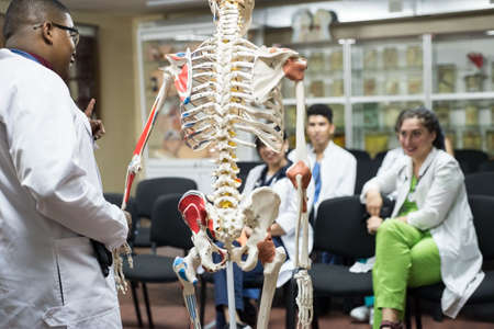 doctors of mixed race, of different sexes, in the study room, study human anatomy, on the skeleton. Young medical students at medical university Stock Photo - 140365671