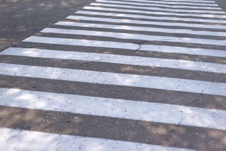 crosswalk white lines of a pedestrian crossing. Road safety. Crossing transition, zebra, danger on the road, attentive path. Imagens