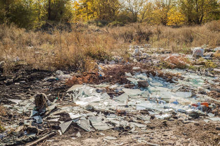 the forest is polluted by waste. Plastic waste in nature. Environmental pollution. The forest is dirty in plastic. Waste from the construction of houses. Autumn landscape on the background of a pile of garbage waste