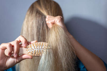 blonde combs dry hair with a wooden comb. On a gray background. concept of dry female blonde hair. Breaking damaging hair Hair problems Imagens