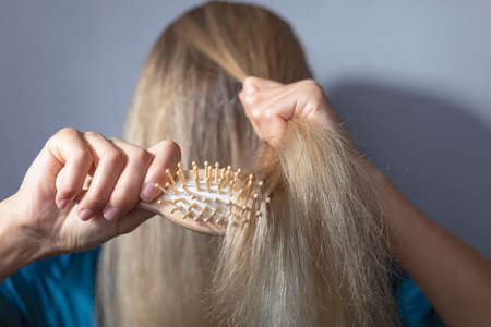 blonde combs dry hair with a wooden comb. On a gray background. Hair disease, fungus, brittle, dry scalp. scalp hair damage young woman pulling damaged both hands