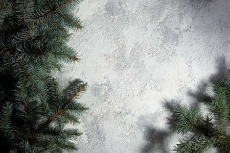 christmas white-gray background with texture of spruce branches top view Christmas concept. on the branches of a blue spruce Christmas decorations on a gray background